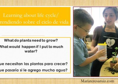 Learning about life cycles
